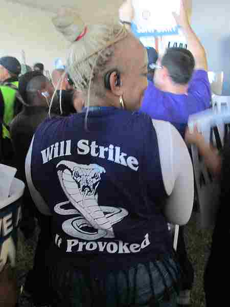 Vest: Will Strike if Provoked